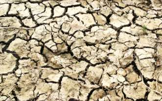 skin like parched earth